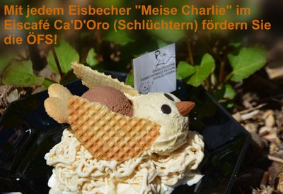 Eisbecher Meise Charly